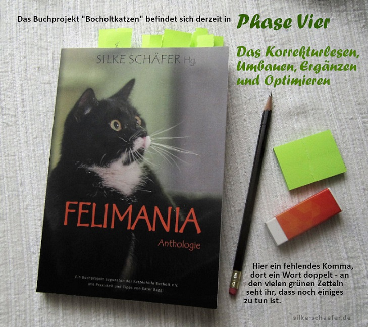 Buch Felimania in Phase Vier