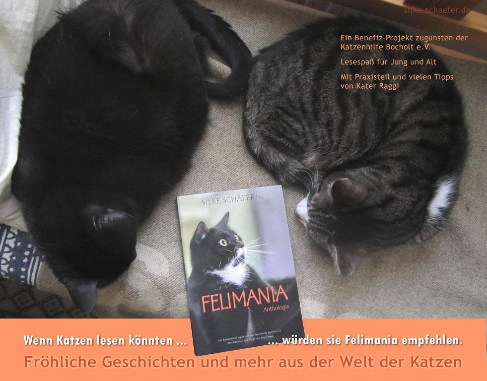Felimania das Katzenbuch